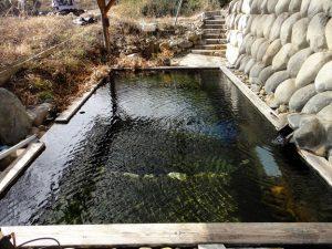 夏なら心地よいだろうが2月では厳しかった@大塚温泉 金井旅館・群馬県中之条町